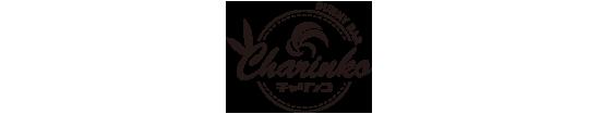 バニーバーチャリンコ加古川ロゴ